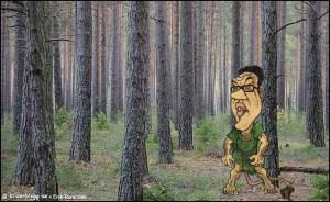 ser inte skogen för bR tr'n